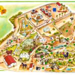 Zoo - Lloc de Menorca